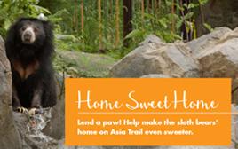Help us build a bear cave_