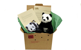 Shop the Zoo_s Holiday Gift Guide_