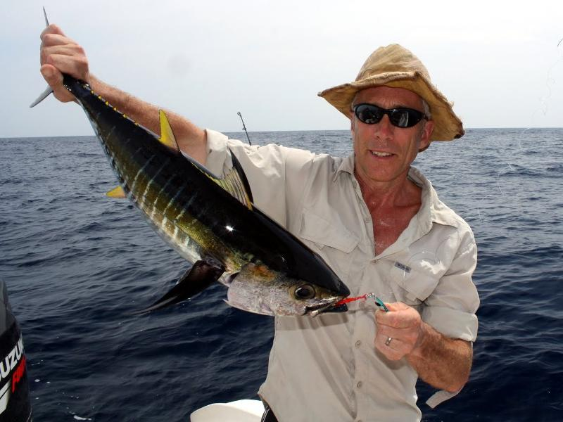 yellowfin tuna caught near cano island