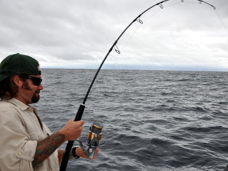 Big Yellowfin Tuna on a Vertical Jig