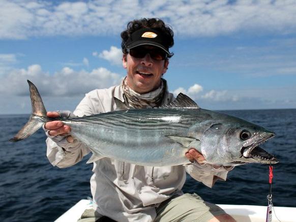Nice Albacore Tuna Caught Near Cano Island