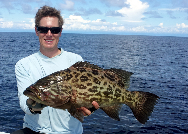 Small Broomtail Grouper on Jig