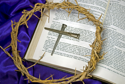 crown of thorns bible