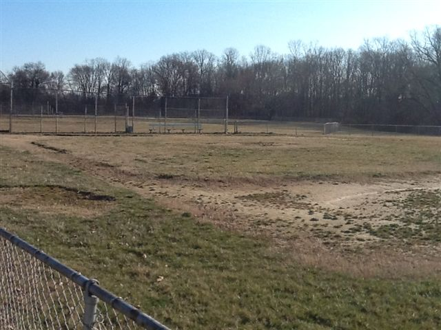 Hamilton field before