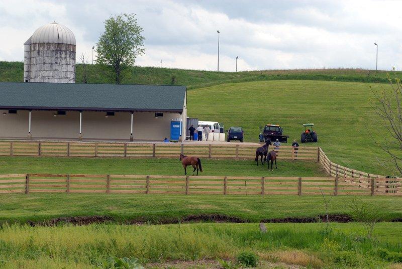 SCF pasture