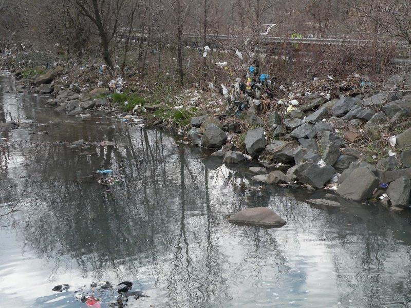 trash along Gwynn run