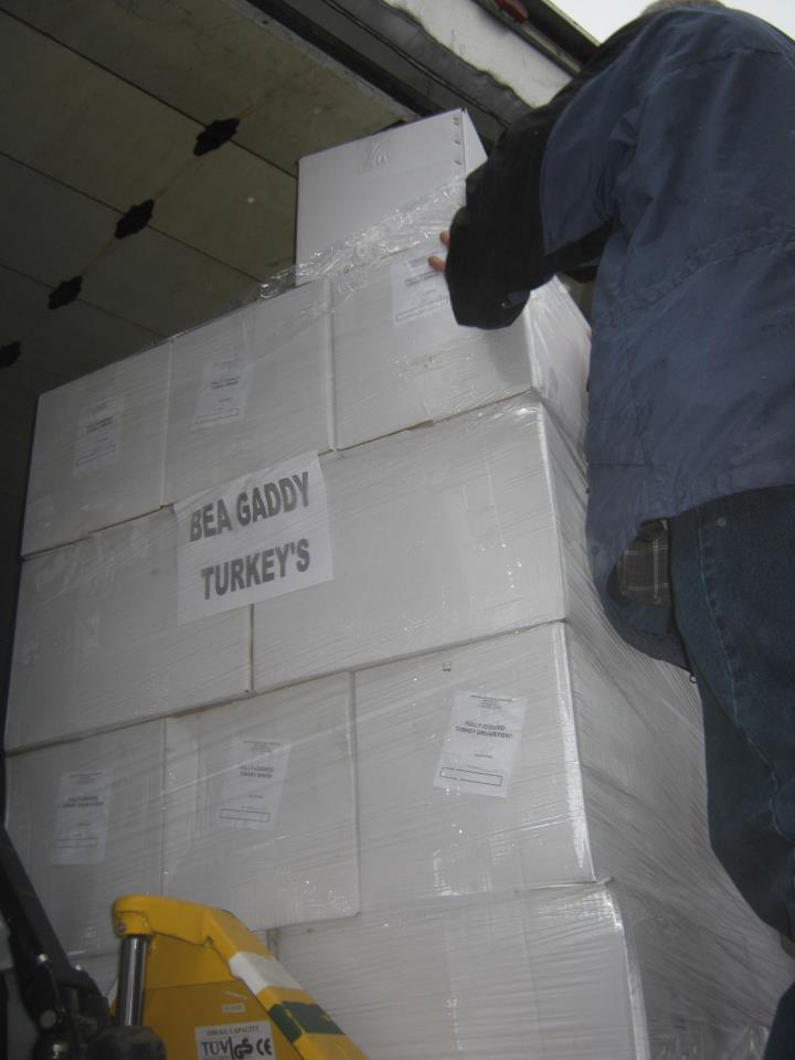 MCE Turkey Boxes 2011