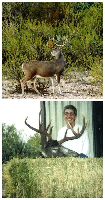 pump deer