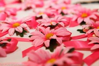 daisy pins Lehigh Valley