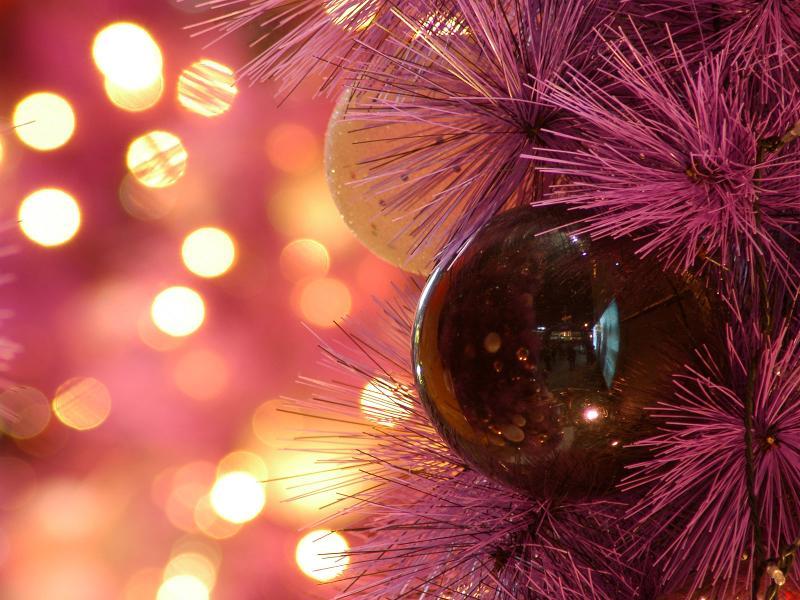 Christmas lights pink