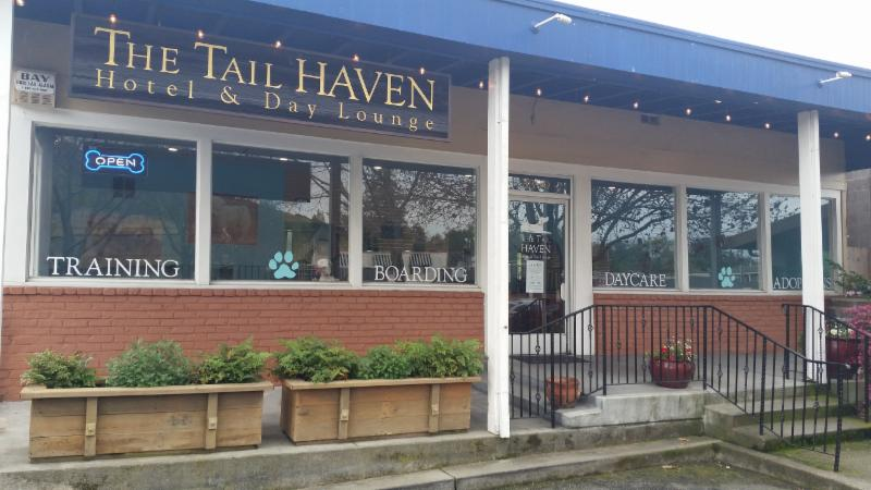 The Tail Haven