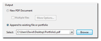 Appending to existing file or portfolio.