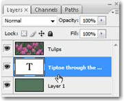 Drag the Type layer down, so that it appears below your colorful layer