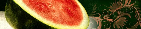 watermelon-flowers.jpg
