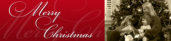 merry-xmas-banner.jpg