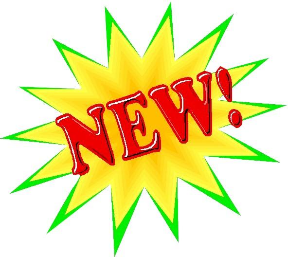 New Career Mentoring Network