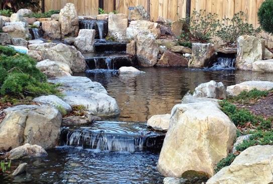 Cape Fear Water Gardens - Aboretum