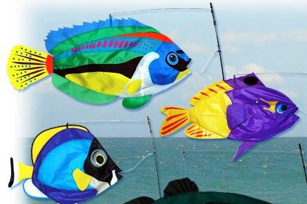 swim fish at stonegarden
