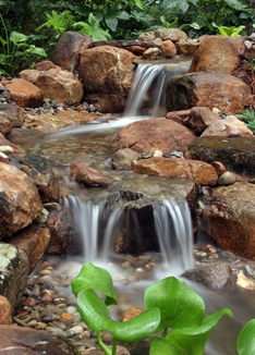 Pondless at Stone Garden