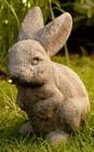 Easter Bunny at Stone Garden