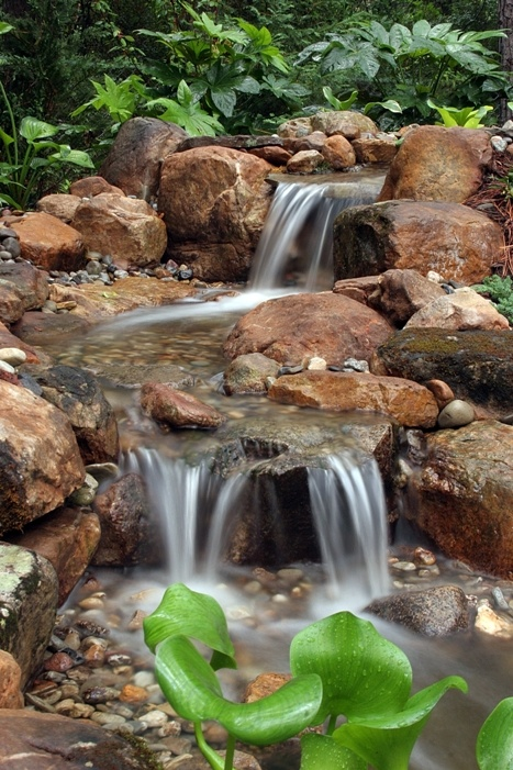 CFWG Pondless Waterfall