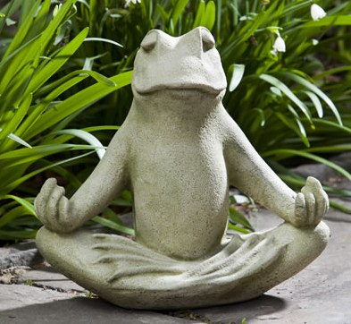 Baby Zen Frog