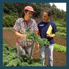 Nutrient Management Planning