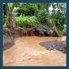 Streambank erosion