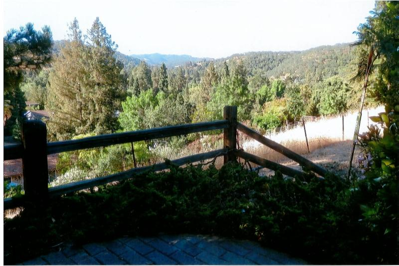 Garden of Meditation View
