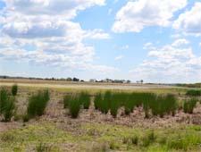 Maryland Environmental Trust lands