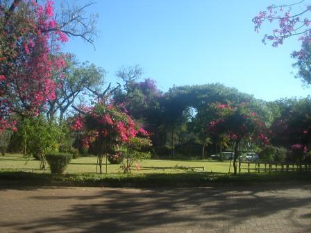 peace filled area Kenya