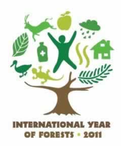 Intl. Year of the Forest - 2011