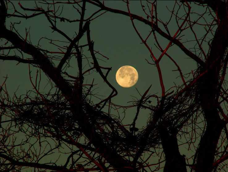 full moon celebrations