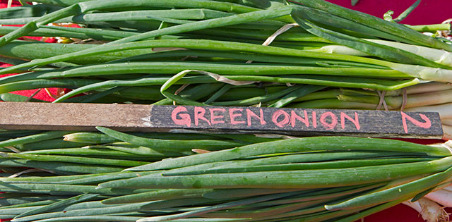 Green onions from The Plahnt Farm.Barb Stiefvater