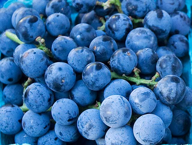 Grapes from Morren Fruits & Vegetables. --Photo by Bill Lubing