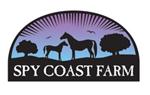 spy coast logo