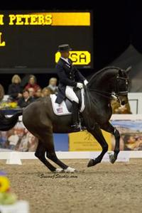 Steffen Peters and Ravel
