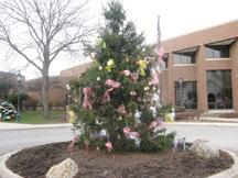 holiday tree program