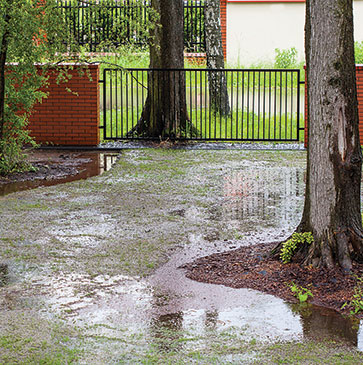 Yard Flooding