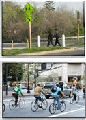 Bike and Ped Safety