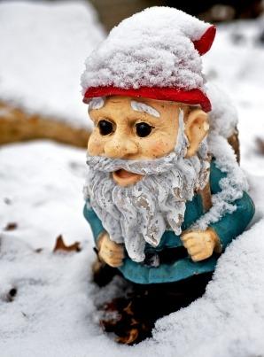 Gnome in Snow