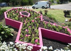 Breast Cancer Awareness Garden Buffalo