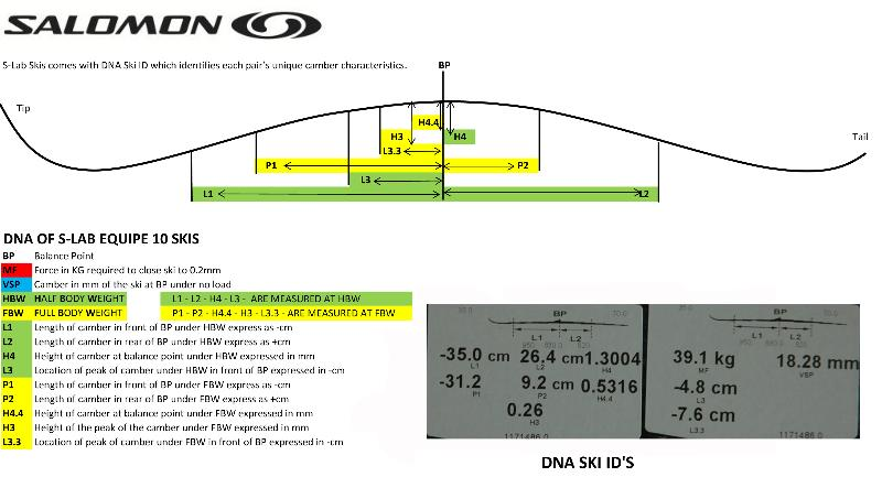Salomon DNA Ski ID