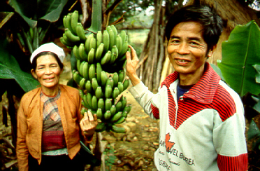 Vietnamese co-op farmers