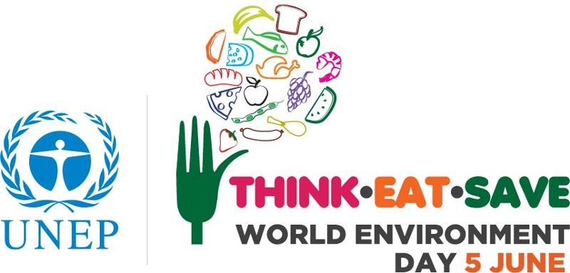 World Environment Day 2013 logo
