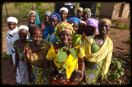 WOmen's co-op members with their seedlings