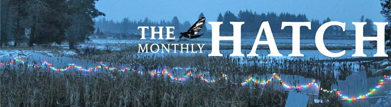 Thurmon Creek weir in holiday lights