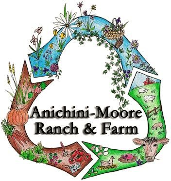anichini-moore ranch & farm