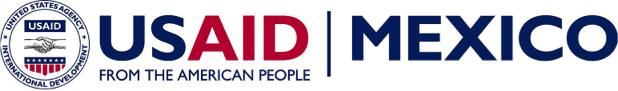 USAID Large