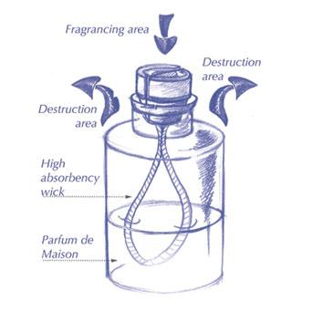 Lamp Diagram